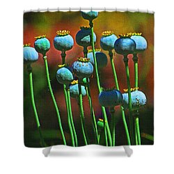 Poppy Seed Pods Shower Curtain by Tom Janca