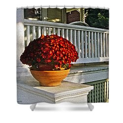 Porch Beauty Shower Curtain by Brian Wallace