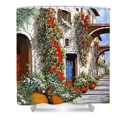 Porta Rossa Porta Blu Shower Curtain by Guido Borelli