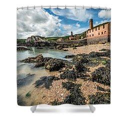 Porth Wen Brickworks Shower Curtain by Adrian Evans