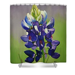 Shower Curtain featuring the painting Portrait Of A Bluebonnet by Jimmie Bartlett