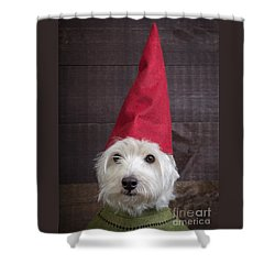 Portrait Of A Garden Gnome Shower Curtain
