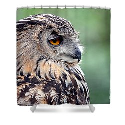 Shower Curtain featuring the photograph Portrait Of A Great Horned Owl by Jim Fitzpatrick