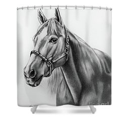 Portrait Of A Horse Shower Curtain by Lena Auxier