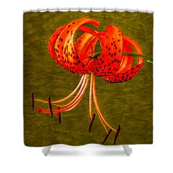 Portrait Of A Tiger Lily  Shower Curtain