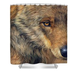 Portrait Of A Wolf Shower Curtain by David Stribbling