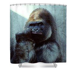 Portrait Of Male Gorilla Gorilla Gorilla Shower Curtain