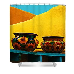 Portrait Of Taos Shower Curtain