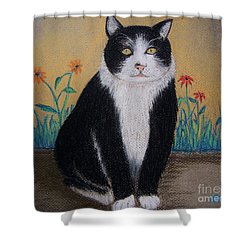 Portrait Of Teddy The Ninja Cat Shower Curtain by Reb Frost
