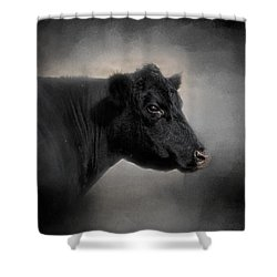 Portrait Of The Black Angus Shower Curtain