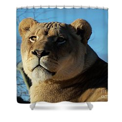 Portrait Of The Mighty Queen Shower Curtain by Lingfai Leung