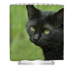 Portrait Of Satin Shower Curtain