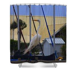 Posing Egret Shower Curtain by Debra Forand