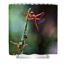 Shower Curtain featuring the photograph Positive Forces by Patrick Witz