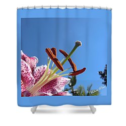 Possibilities 2 Shower Curtain