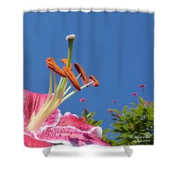 Possibilities 3  Shower Curtain