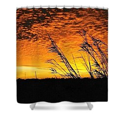 Post Hurricane Rita At Dockside In Beaumont Texas Usa Shower Curtain by Michael Hoard