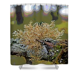 Posterized Antler Lichen Shower Curtain by Cathy Mahnke