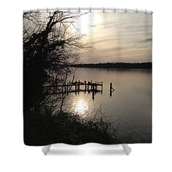 Potomac Reflective Shower Curtain