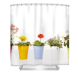 Potted Flowers Shower Curtain by Alexey Stiop