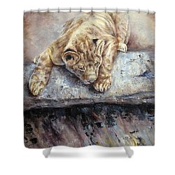 Pounce Shower Curtain