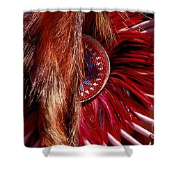Pow-wow Costume Shower Curtain by Paul W Faust -  Impressions of Light