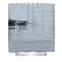 Shower Curtain featuring the photograph Power In Motion by Marilyn Wilson