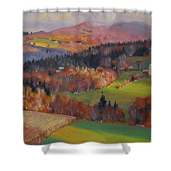 Shower Curtain featuring the painting Pownel Vermont by Len Stomski