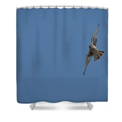 Prairie Diver Shower Curtain