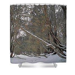 Prairie Winter 2 Shower Curtain by Terry Reynoldson
