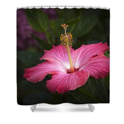 Praise Be To God Shower Curtain by Penny Lisowski