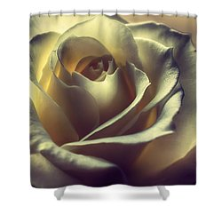Prayer Candle Rose Shower Curtain