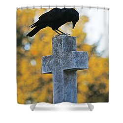 Praying Crow On Cross Shower Curtain