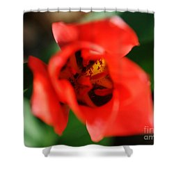 Pre-pollination  Shower Curtain by Neal Eslinger