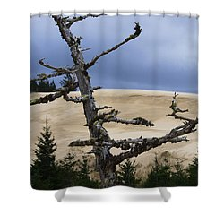 Pre Storm Shower Curtain by Adria Trail