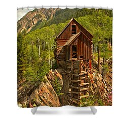 Precarious Perch Shower Curtain by Adam Jewell