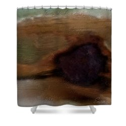 Preconceived Contrast Shower Curtain
