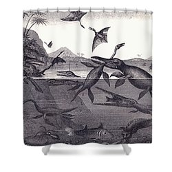 Prehistoric Animals Of The Lias Group Shower Curtain by English School