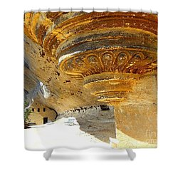 Prehistoric Shower Curtain by Lauren Leigh Hunter Fine Art Photography