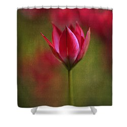 Shower Curtain featuring the photograph Presence by Annie Snel