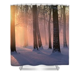 Presence Of Light Shower Curtain