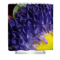 Present Moments - Signed Shower Curtain