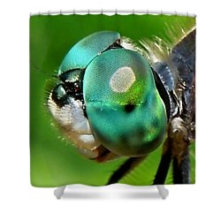 Pretty Eyes Shower Curtain by Renee Trenholm