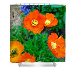 Pretty In Orange Shower Curtain