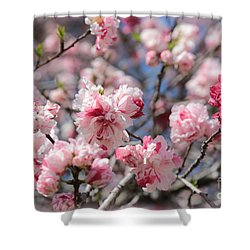 Pretty In Pink Shower Curtain by Carol Groenen