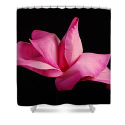 Pretty In Pink Shower Curtain by Elsa Marie Santoro