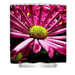 Pretty In Pink Shower Curtain by Greg Simmons