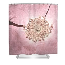 Pretty In Pink...heirloom Shower Curtain by Tammy Schneider