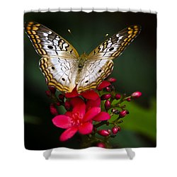 Pretty Little Butterfly  Shower Curtain by Saija  Lehtonen