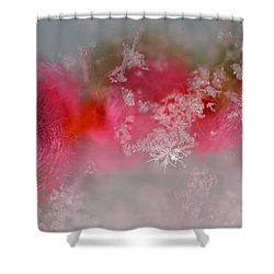 Shower Curtain featuring the photograph Pretty Little Snowflakes by Lauren Radke